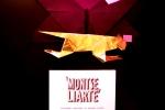 Montse Liarte